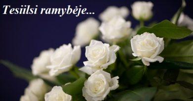 Liūdime dėl Gražinos Strelcovienės mirties