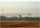 Nuo spalio vidurio rekordinio dydžio išmokų avansai ūkininkams – 313 mln. Eur
